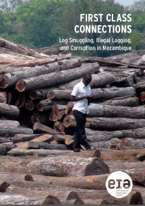 Log Smuggling Mozambique