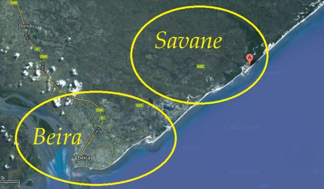 Savane in Sofala Mozambique