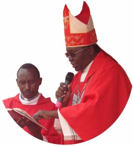 installation-of-rev-fr-norbert-renatus-nkingwa-05b2